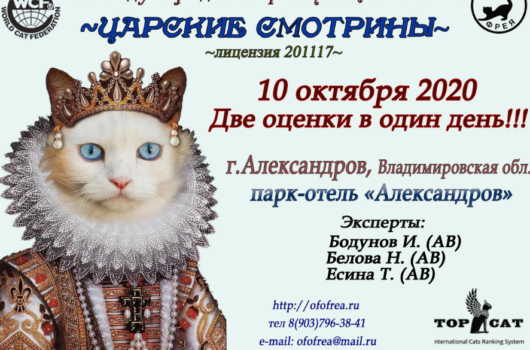 "Exhibition ""Tsar's bride"" Aleksandrov 10.10.2020"