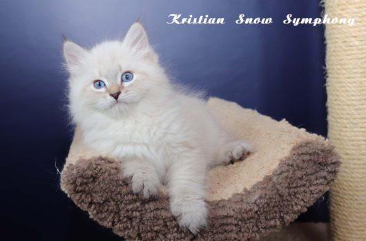 Kristian Snow Symphony