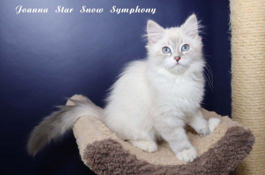 Joanna Star  Snow Symphony